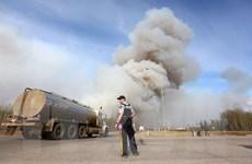 Diện tích cháy rừng ở Canada có thể tăng lên tới 2.000km2