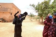 Phụ nữ Syria vứt mạng che mặt sau khi được giải phóng khỏi IS