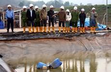 Yêu cầu Công ty Bồng Miêu dừng ngay hoạt động khai thác vàng
