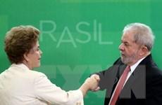 Cựu Tổng thống Brazil Lula da Silva nhiều khả năng tái tranh cử