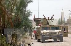 Iraq giải phóng thêm nhiều khu vực khỏi sự chiếm đóng của IS
