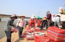 Sẽ thêm nhiều chính sách hỗ trợ ngư dân 4 tỉnh bị sự cố môi trường
