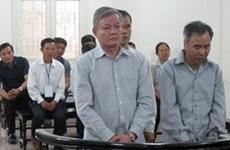 Hà Nội: Cấp đất giãn dân trái thẩm quyền, nhóm cán bộ xã bị phạt tù