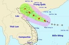 Triển khai các phương án ứng phó với cơn bão đầu tiên trong năm