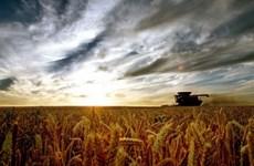Trung Quốc lập quỹ 375 triệu USD đầu tư nông nghiệp tại Australia