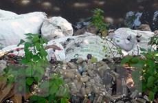 Chưa phát hiện chất thải nguy hại tại bãi rác thải y tế ở Bắc Ninh