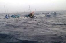 Phú Yên: Kịp thời cứu bốn ngư dân tàu cá bị chìm trên biển