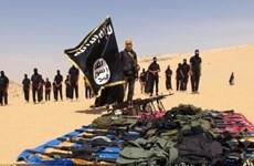 Israel chuẩn bị ứng phó với các cuộc tấn công của IS từ Sinai