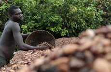 Mỹ dỡ bỏ lệnh cấm vận kinh tế đối với Côte d'Ivoire