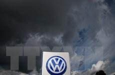 """Hãng Volkswagen tiếp tục bị vụ gian lận khí thải """"đeo bám"""""""