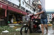 Bão Malakas đổ bộ vào Nhật Bản sau khi càn quét qua Trung Quốc