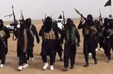Nhóm khủng bố IS tuyên bố sát hại hàng chục binh sỹ ở Nigeria
