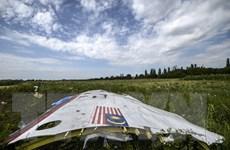 Pháp kêu gọi Nga hợp tác trong cuộc điều tra vụ máy bay MH17