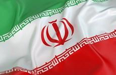 Thắt chặt hơn nữa quan hệ hợp tác giữa Việt Nam-Iran