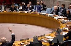HĐBA bác bỏ hai dự thảo nghị quyết của Pháp và Nga về Syria