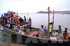 Xác định nguyên nhân ban đầu gây chìm tàu ở khu vực đảo Cồn Cỏ