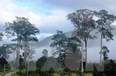 Vườn quốc gia Phước Bình, điểm đến hấp dẫn của Ninh Thuận