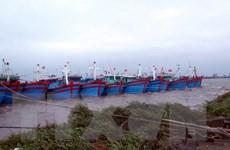 Bão số 7 đang tiến vào khu vực đất liền Hải Phòng-Quảng Ninh