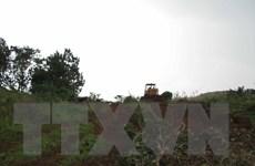 Vụ nổ súng do tranh chấp đất rừng ở Đắk Nông: Thêm 2 nghi can đầu thú