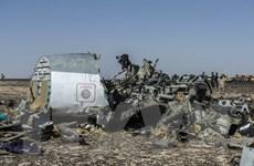 Ai Cập tưởng niệm một năm vụ máy bay Nga rơi tại Sinai