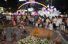 Đường hoa Nguyễn Huệ 2017 sẽ có chủ đề về khát vọng ngời sáng