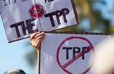 Chính quyền Tổng thống Obama từ bỏ nỗ lực thông qua TPP