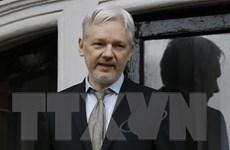 Thụy Điển chưa công khai nội dung thẩm vấn nhà sáng lập Wikileaks