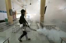 Thái Lan phát hiện thêm 33 ca nhiễm virus Zika trong tuần qua