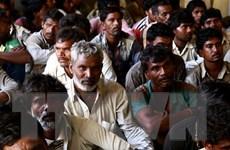 Pakistan bắt 43 ngư dân Ấn Độ với cáo buộc xâm phạm lãnh hải