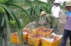 Thành lập nhóm công tác thúc đẩy thương mại Việt Nam-Australia