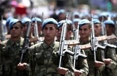 Hạ viện Áo đề xuất hạn chế bán vũ khí cho Thổ Nhĩ Kỳ