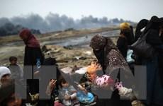 Mosul trong vòng vây lửa đạn, nửa triệu người Iraq cạn kiệt nước sạch