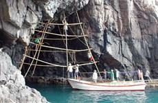 Yến hàng Côn Đảo, đặc sản mới của Bà Rịa-Vũng Tàu