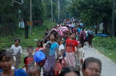 Myanmar ngừng vô thời hạn đưa lao động di cư tới Malaysia