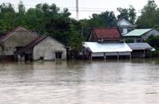 Theo dõi chặt chẽ, chủ động triển khai các biện pháp ứng phó mưa lũ