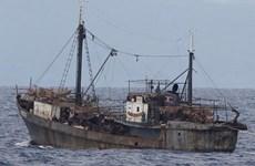 Hàn Quốc cứu tám thủy thủ Triều Tiên bị trôi dạt trên biển