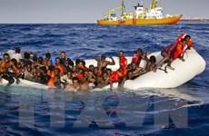 Italy tìm cách trục xuất những người nhập cư bất hợp pháp