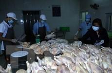 Tăng cường bảo đảm an toàn thực phẩm Tết Nguyên đán Đinh Dậu