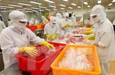 Doanh nghiệp Việt mất hàng triệu USD từ rủi ro thương mại quốc tế