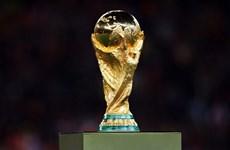 Tranh cãi gay gắt với việc FIFA mở rộng World Cup lên 48 đội