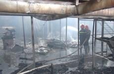 Hỏa hoạn thiêu rụi gần 1.000m2 xưởng gỗ ở Bình Dương
