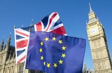 Doanh nghiệp Đức rút bớt đầu tư tại Anh sau tuyên bố của bà May