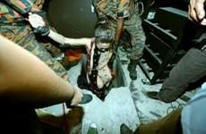 Cảnh sát Malaysia bắt giữ 8 phụ nữ Việt Nam trốn dưới hầm ngầm