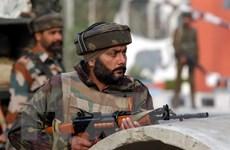 Ấn Độ cảnh báo nguy cơ khủng bố dịp lễ kỷ niệm Ngày Cộng hòa
