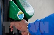 BP: Tăng trưởng nhu cầu đối với dầu mỏ của thế giới sẽ chậm lại