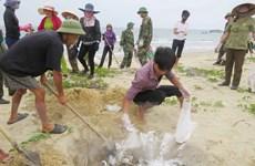 Bảo vệ môi trường chính là đầu tư cho phát triển bền vững