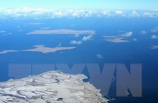 Nga-Nhật chuẩn bị đàm phán về hoạt động kinh tế quần đảo tranh chấp
