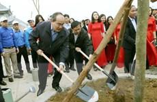 Cần làm cho việc bảo vệ rừng, trồng cây thành nếp sống của người Việt