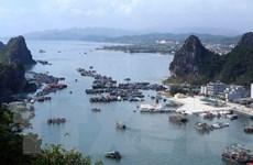 Một khách du lịch nước ngoài mất tích trên Vịnh Hạ Long