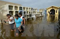 Mưa lớn nhiều ngày gây lũ lụt ở Peru khiến ít nhất 25 người thiệt mạng